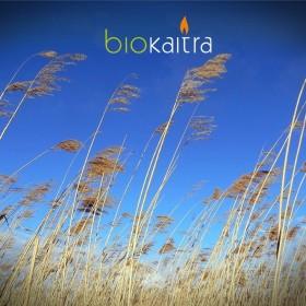 Теплотема - Biokaitra